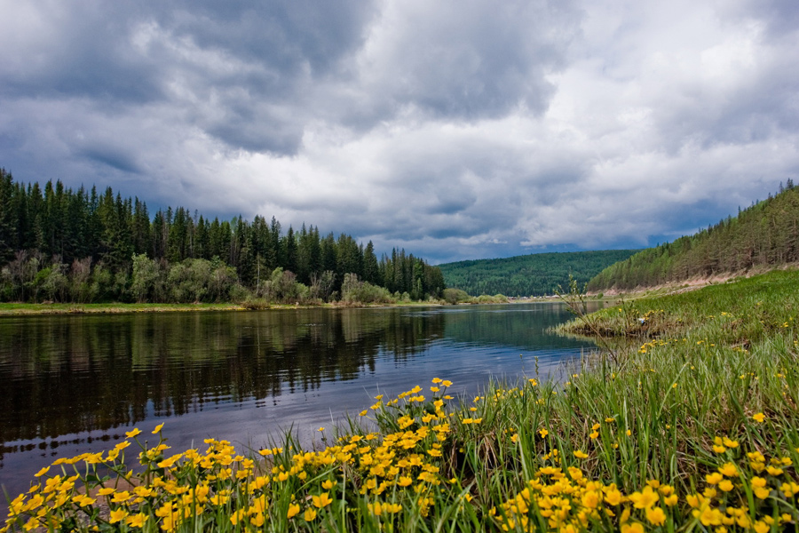 Лето природа сибири картинки
