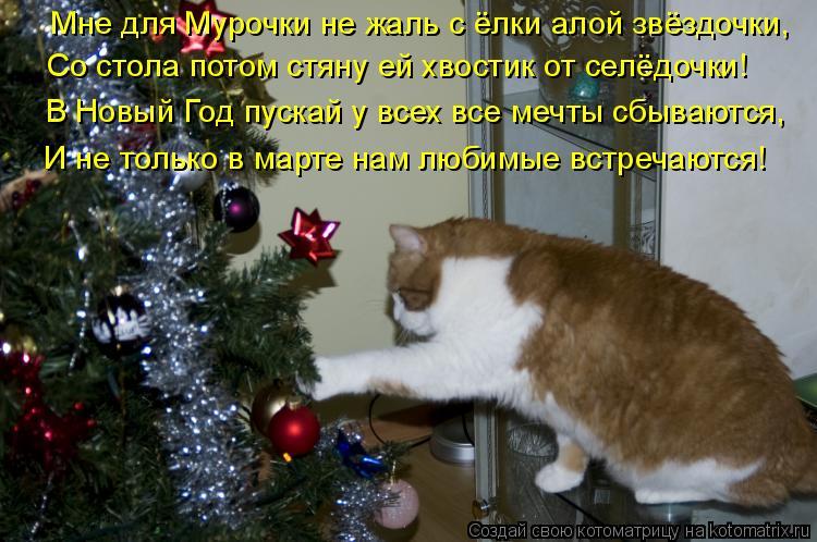 Фото приколы на новый год с надписями