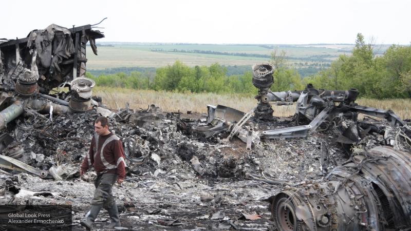 """Эксперт заявил о намеренном """"запоздании"""" Нидерландов в расследовании гибели MH17"""