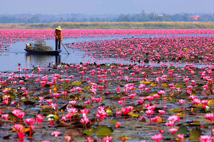 20 фото невероятной природной красоты, которые заставляют сердце трепетать от восторга