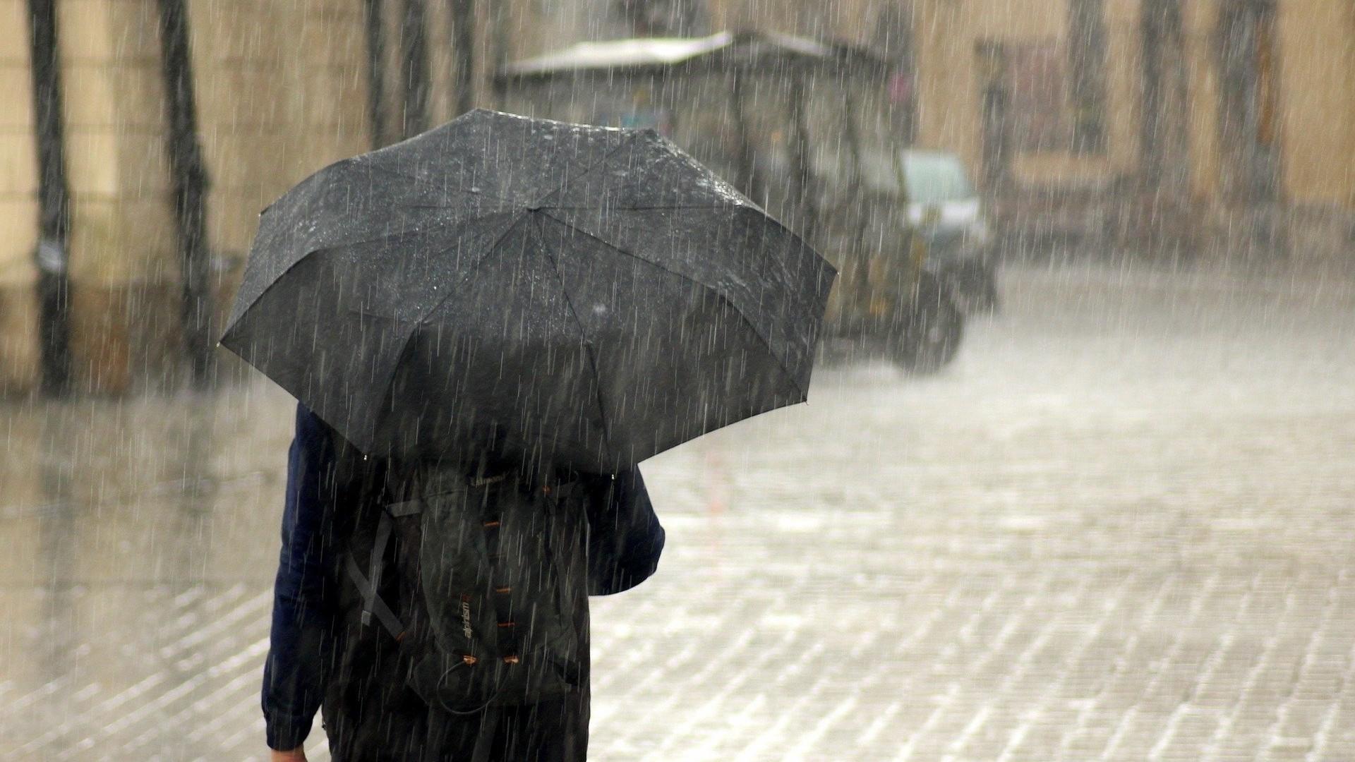 МЧС предупредило петербуржцев о дождях и грозах в воскресенье Общество