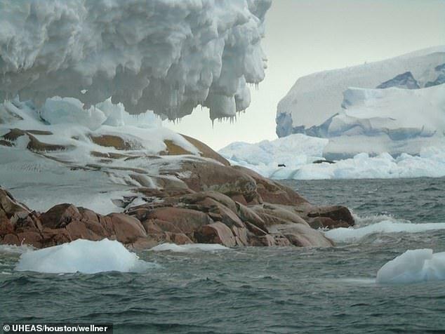 У берегов Антарктиды нашли новый остров антарктида,новый остров,открытие