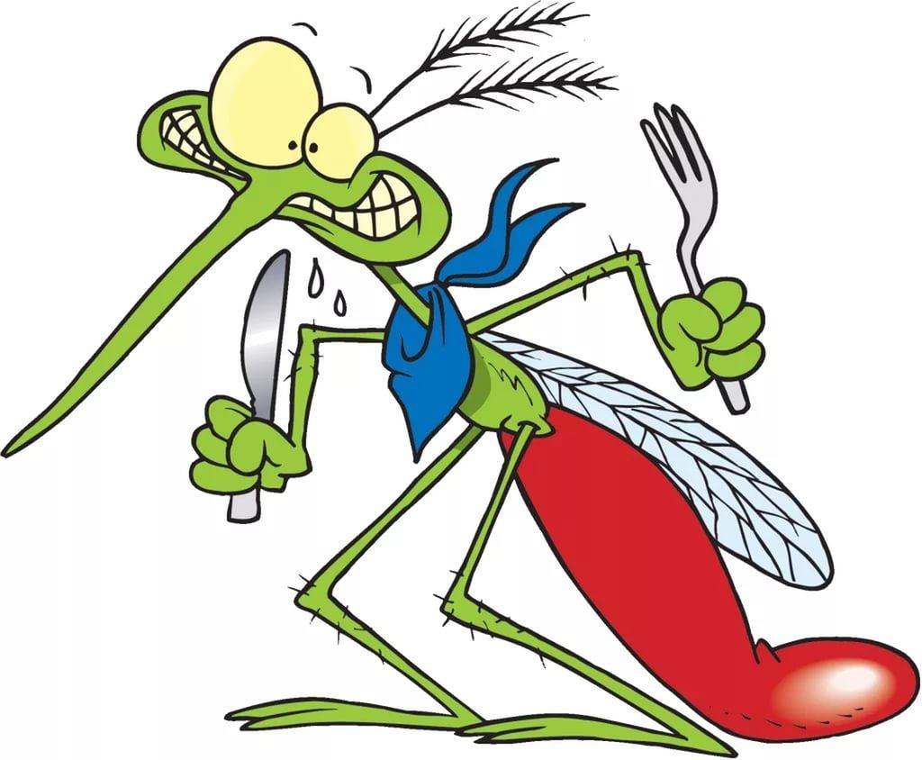 Картинки прикольные комара