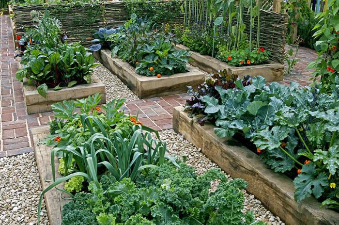 Ящики для растений.