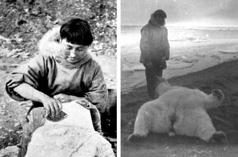 Ада обрабатывает шкуру (слева). Кроуфорд и поверженный белый медведь (справа) Ада Блэкджек, арктика, интересно, история, познавательно, факты