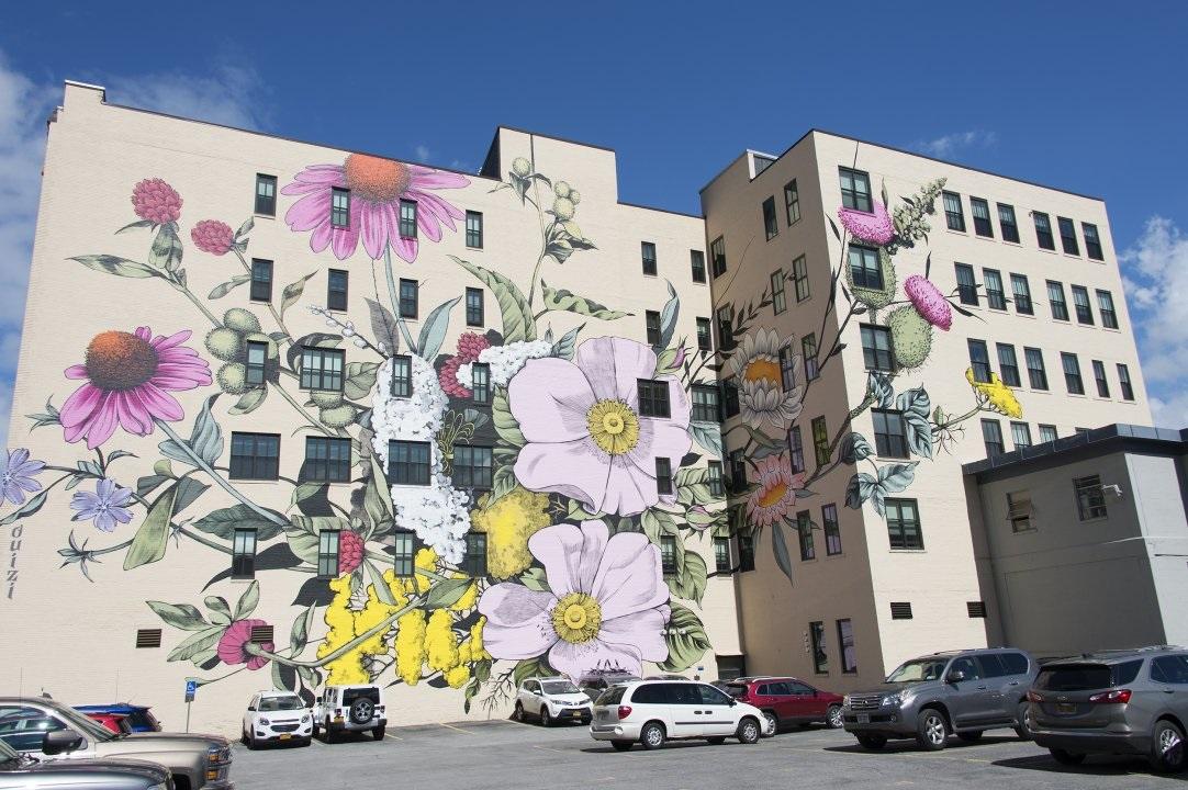 Цветы на стенах городов