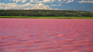 В России есть озеро, которое…