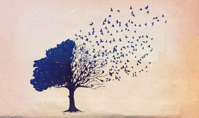 5 поучительных притч жизнь,мудрость,притчи