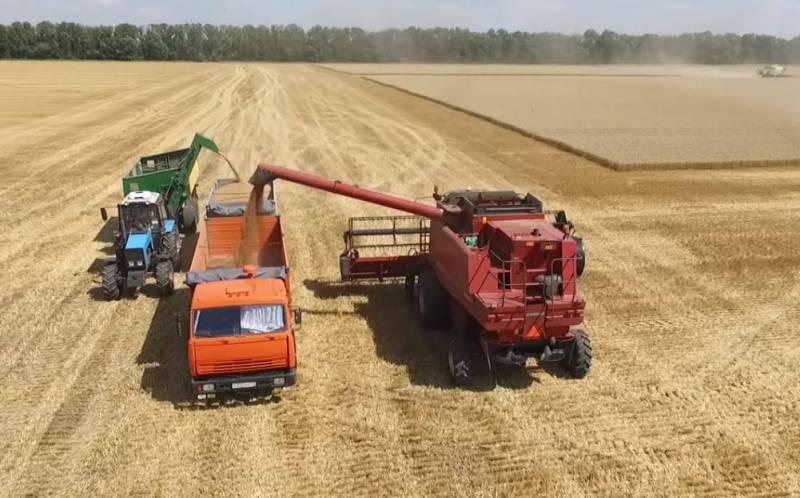 Bloomberg: Действия России приведут к росту цен на пшеницу Новости