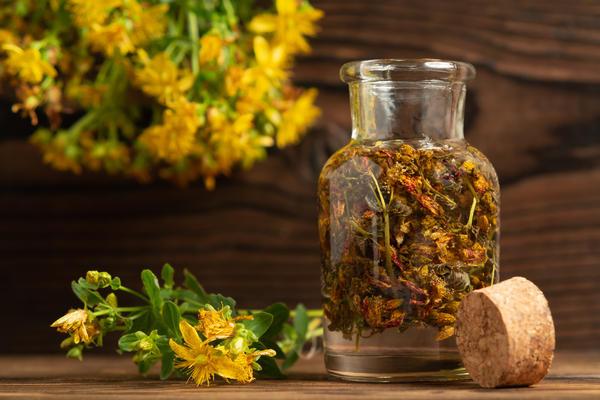 Лекарства из трав: какие бывают и как их готовить здоровье,народная медицина,фитотерапия