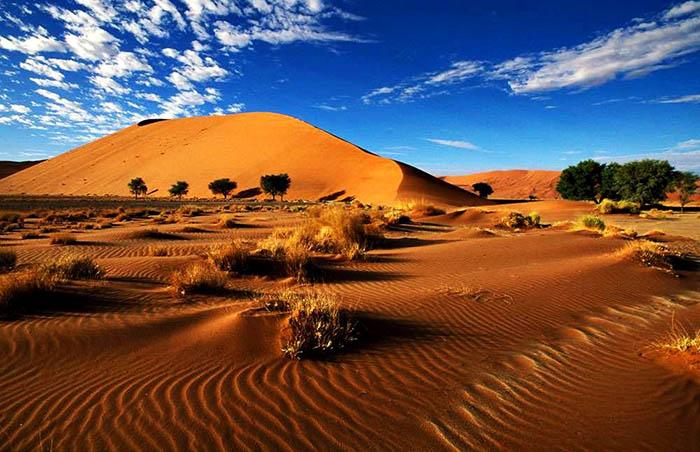 Пустынная местность.
