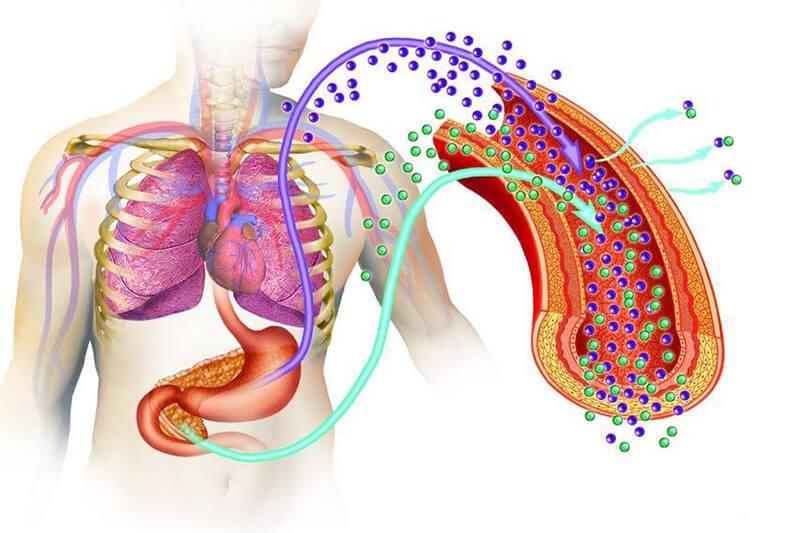 На грани риска: как распознать и остановить преддиабет