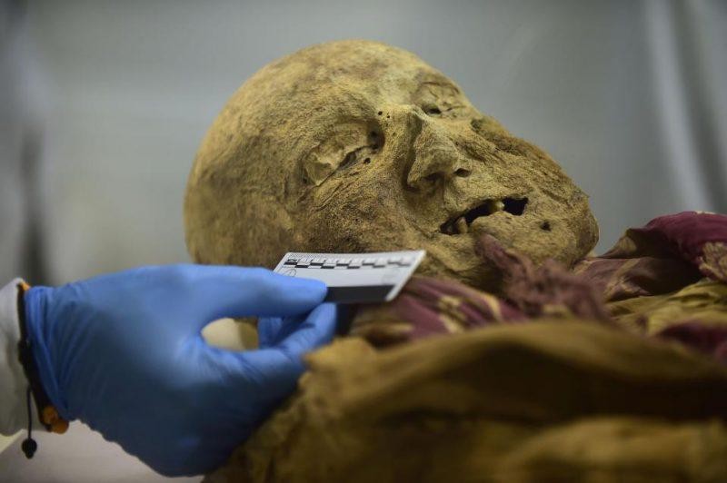 Открытия исследователей после изучения останков 500-летней мумии монаха
