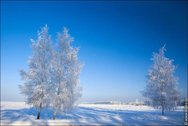 Морозный день… Зато над головою...