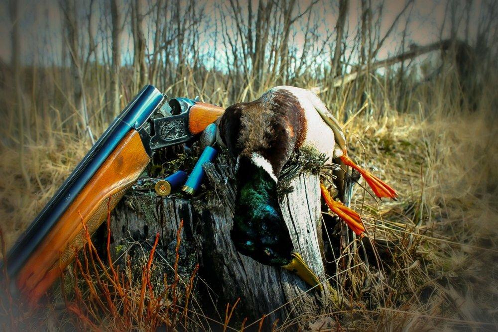 картинки горнист на охоте