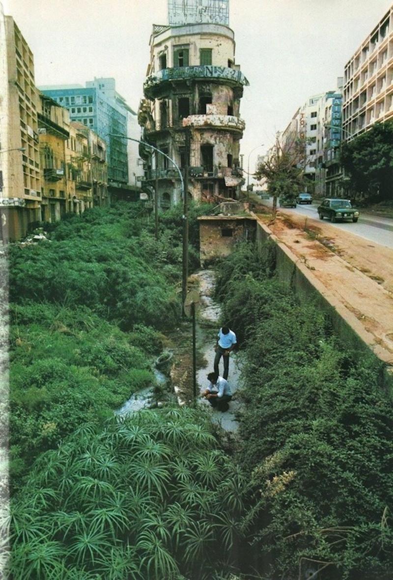 Старый альбом кунсткамера, ностальгия, редкие фотографии