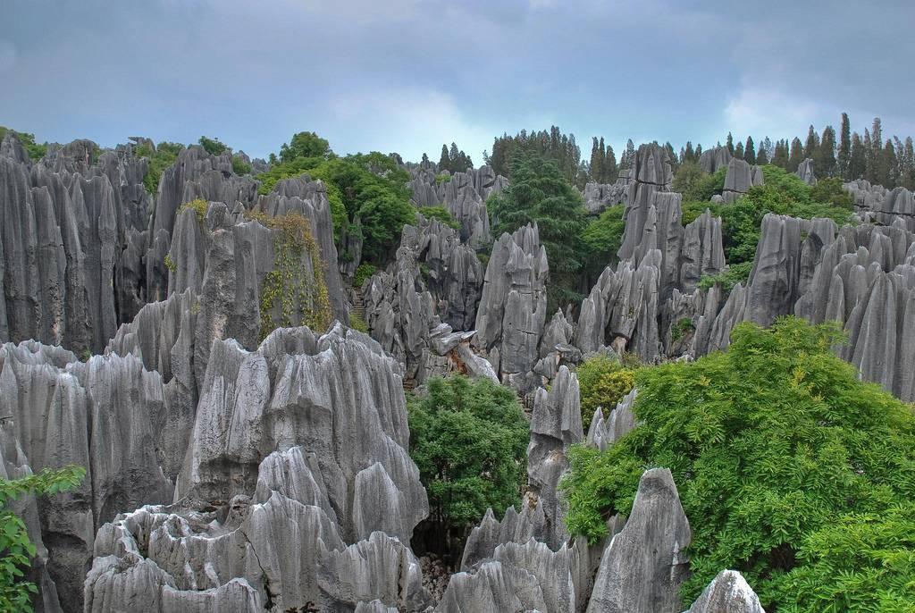 Каменный лес Шилинь Китай. Могущество и величие природы. Самые загадочные и аномальные геологические образования на планете. Фото с сайта NewPix.ru