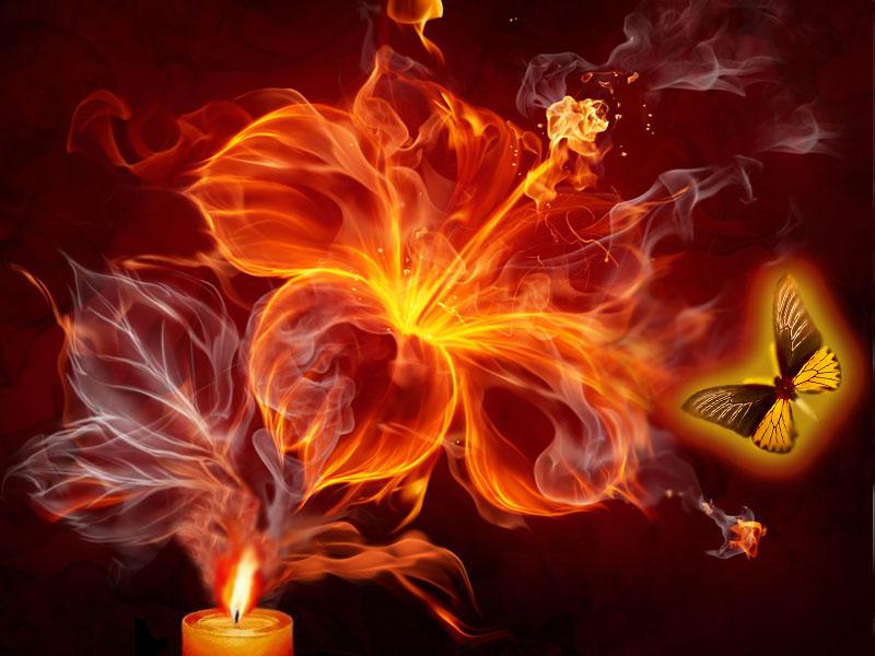 картинки мотылек летит на огонь и вода конечно мучить