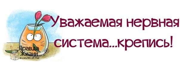 словам осиашвили, поздравление классному нервы здесь