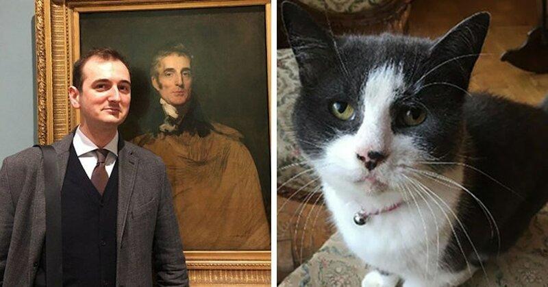 В Британии кот искусствоведа…