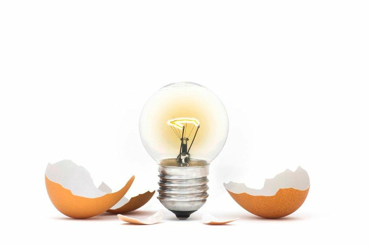 9 поводов не выбрасывать яичную скорлупу. Вы начнете ее активно применять в хозяйстве! дача,полезные советы,сад и огород,уборка
