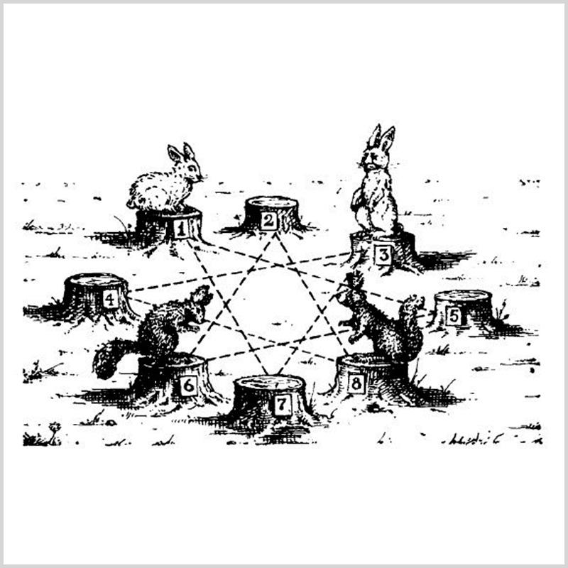«Белки икролики»: увлекател…