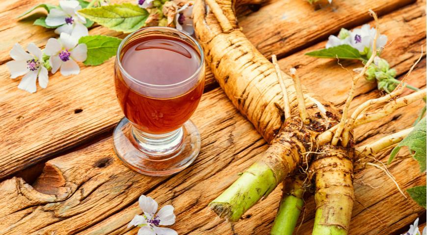 7 проверенных рецептов травяного чая от кашля готовим дома,здоровье,напитки