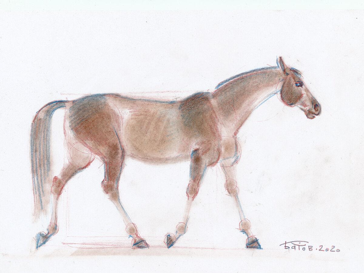 Простое рисование бледной лошадки вдохновлеямся,дома,досуг,идеи,конь,лошадь,рисование,сидим