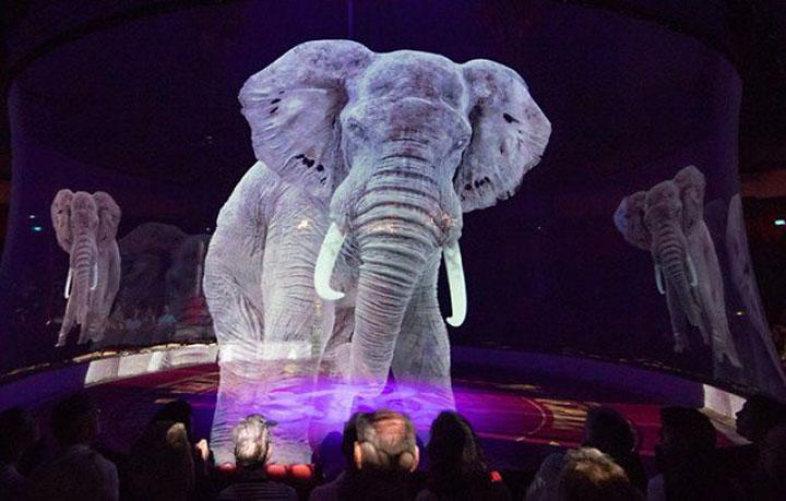Вот как поступают с животными в немецком цирке!