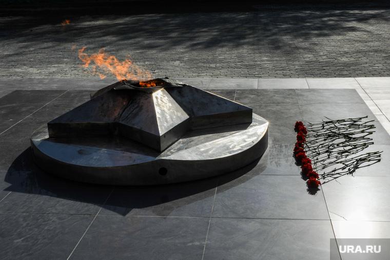 Это делают наши дети: школьники сожгли венки на Вечном огне. ВИДЕО