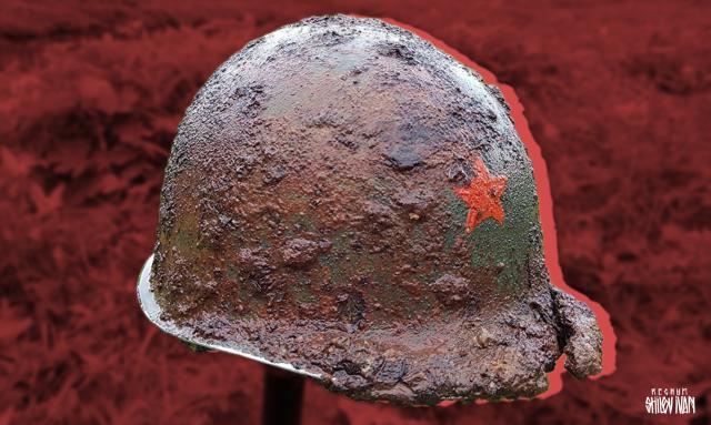 Готов ли кто бороться за спасение памяти героев Великой Отечественной войны? россия