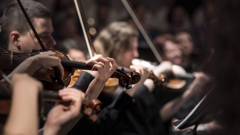 Лучшие участники проекта «Музыкальные надежды Арктики» получают возможность выступить с оркестром Общество