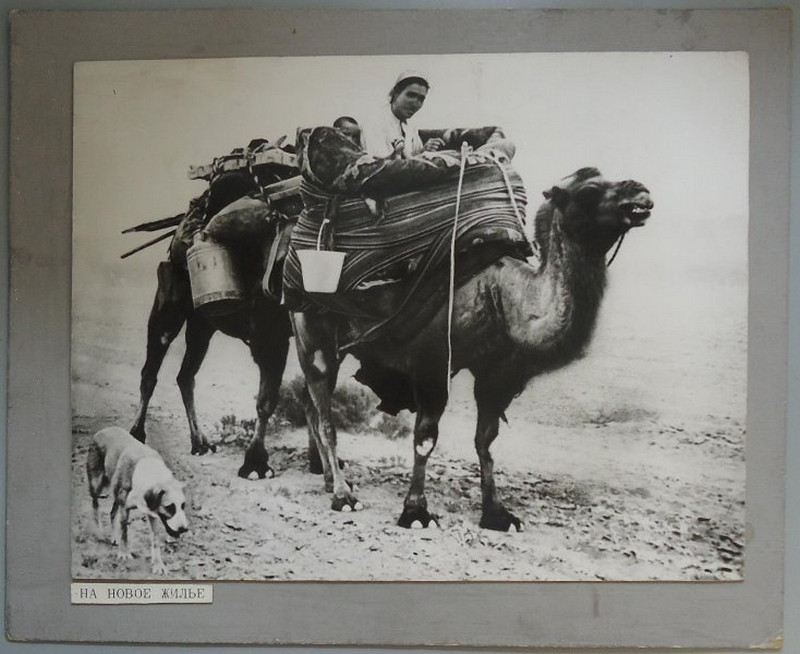 Снимки 1960-70-х годов фотографа-этнографа Георгия Аргиропуло 57