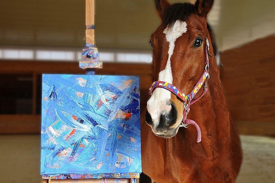 За несколько лет картины коня были проданы принесли его хозяину 160 тысяч долларов! ФОТО paintedbymetro.com