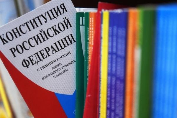 В России создали детскую конституцию в стихах и картинках