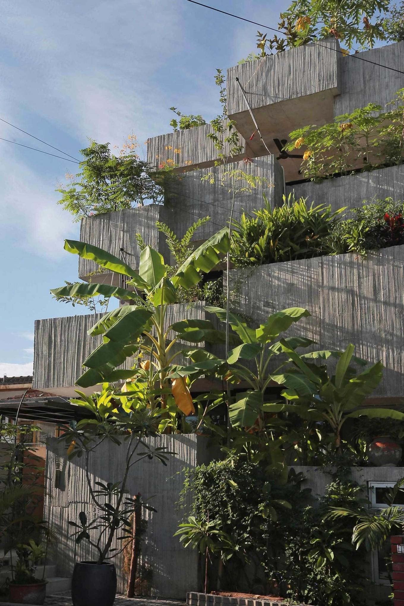 Необычный дом для любителей выращивать растения архитектура,идеи для дома,интерьер и дизайн