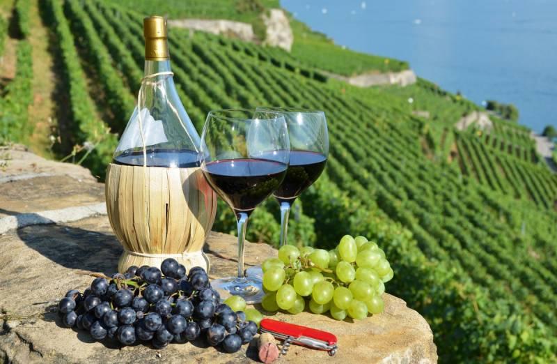 Туризм и вино: Кремль может поставить грузинскую экономику на колени