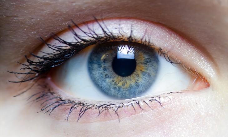 35 фактов о глазах, которых вы не знали