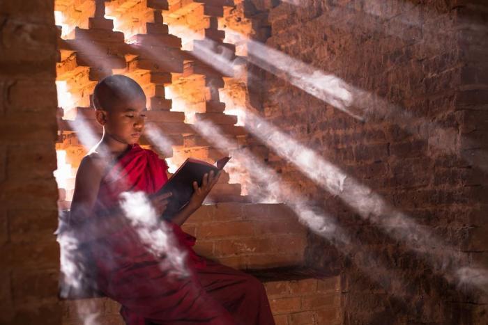 Фотографов спросили, как они видят образование. Они ответили...