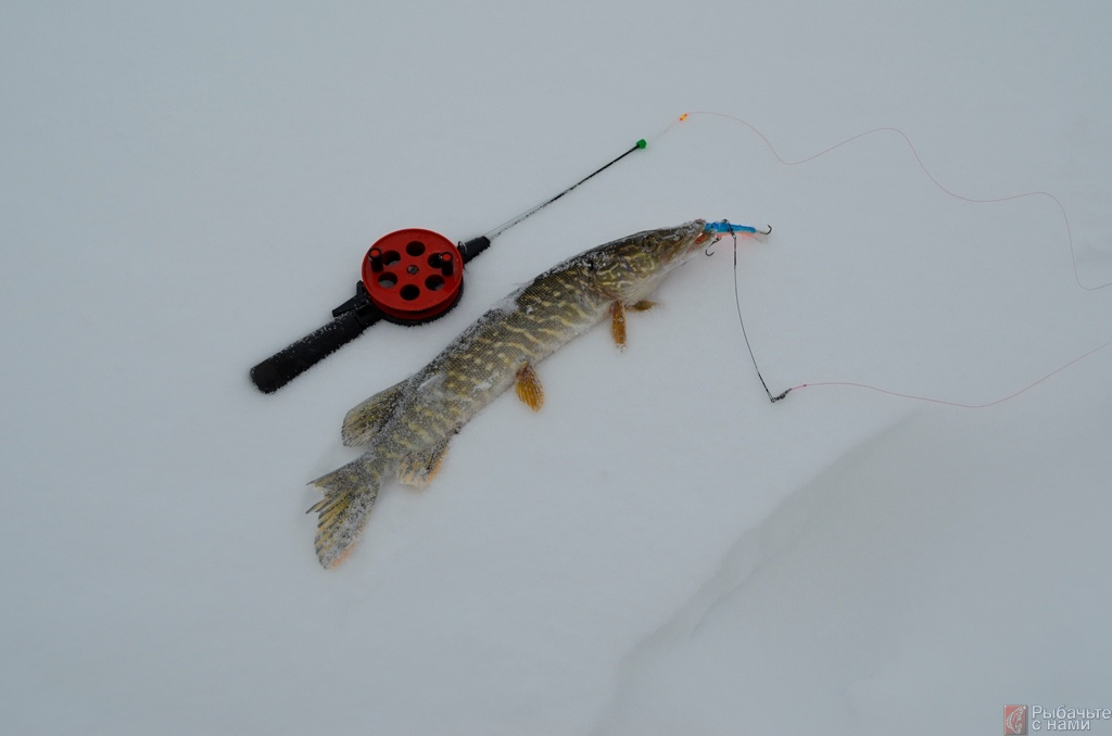 Леска для зимней рыбалки балансиром