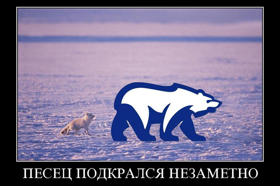 О том, как в Россию нагрянул натуральный песец