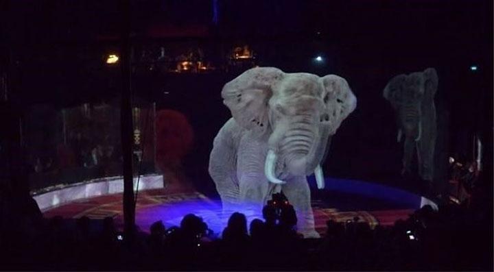 Вот как поступают с животными в немецком цирке! Ронкалли, животными, животных, сделать, животные, которые, решили, цирки, время, проекторы, массово, обвиняют, условияхАктивисты, возрастающей, содержатся, всему, цирковые, обеспокоенности, работники, невыносимых