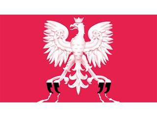 """Польская """"жертва"""" заливает соседей кровью геополитика"""