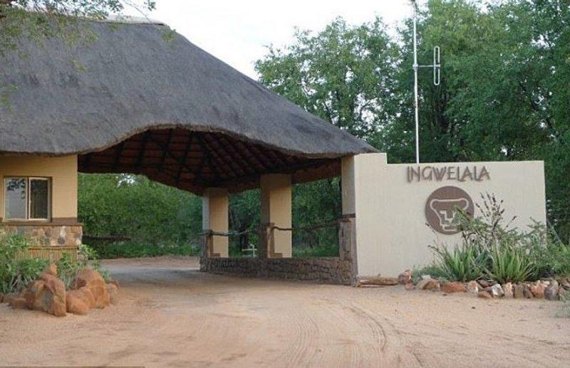Работник соседнего заповедника утверждает, что инцидент произошел на львиной территории Прайд, африка, браконьер, животные, заповедник, история, лев, охота