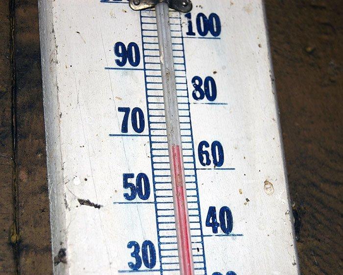 Самая высокая температура, зарегистрированная в Антарктиде, - +17,5 градусов Антарктика, антарктида, интересно, ледяной континент, познавательно, секреты Антарктики, удивительно, факты