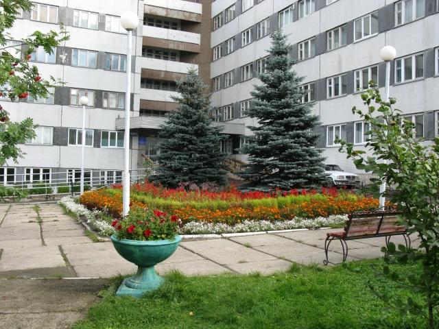 Главврач красноярского госпиталя выпала из окна своего кабинета коронавирус,медицина,общество,россияне