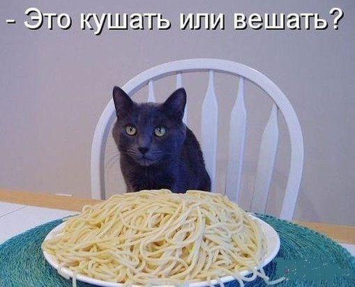 Анекдоты из Одессы. Очередная порция