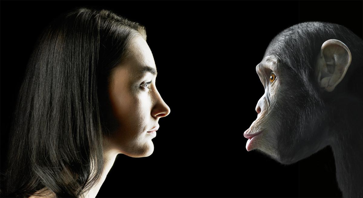 Наука: ошибки природы Дарвин,интересное,наука,организм,человек,эволюция