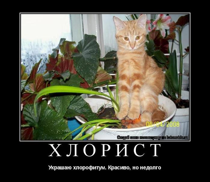 Если ты читаешь этот текст, значит, опять сидишь и маешься дурью в Интернете  ))