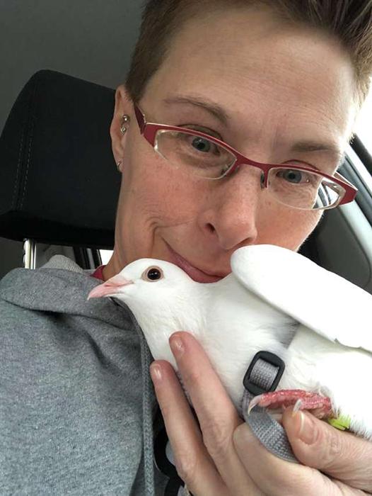 Женщина нашла белого голубя, который не умел даже добывать себе еду.